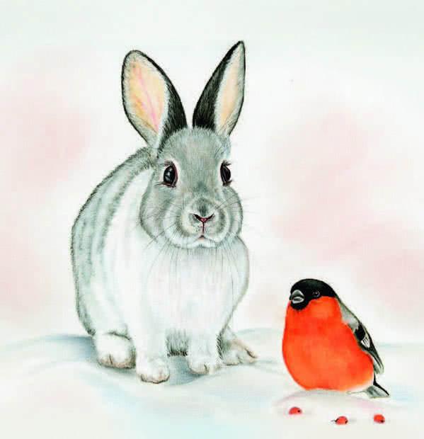 Мороз и заяц картинки для детей