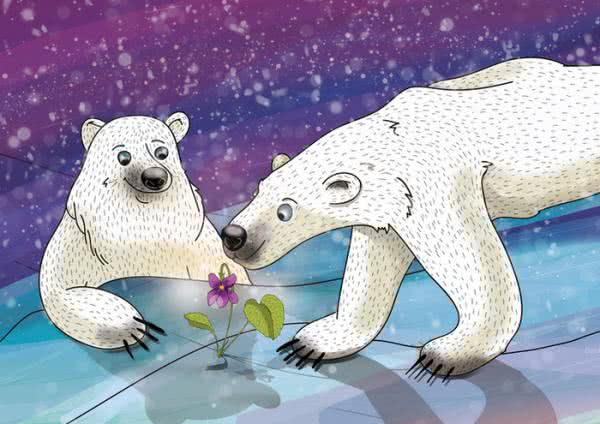 Фиалка на Северном полюсе