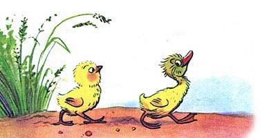 Цыплёнок и утёнок — Сутеев В.Г.
