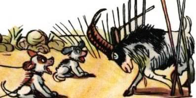 Не ходи козел в огород — Сутеев В.Г.