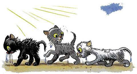 Три котёнка — Сутеев В.Г.