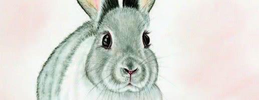 Мороз и заяц — русская народная аудиосказка