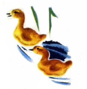 непослушные гусята