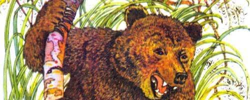 Сказка Про Комара Комаровича-длинный нос и про мохнатого Мишу-короткий хвост — аудиосказка Мамина-Сибиряка