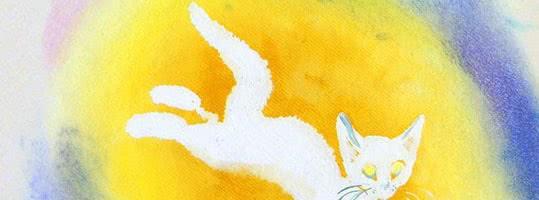 Сказка про доктора, котёнка и луну — аудиосказка Биссета