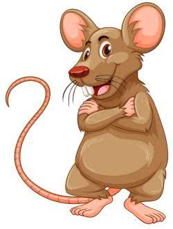 сказки про мышку