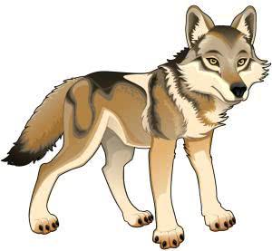 сказки про волка