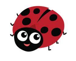 сказки про жуков