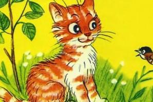 Котёнок по имени Гав - сказка Остера