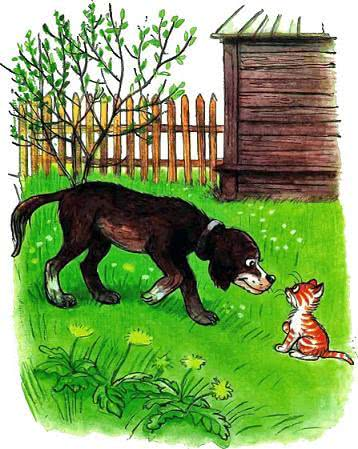 Котёнок по имени Гав рассказы Остера