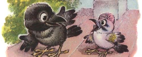 Отчего галка черная — Пляцковский М.С.