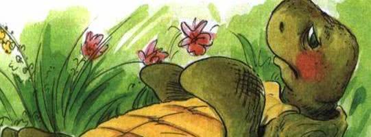 Сказка о перевернутой черепахе — Пляцковский М.С.