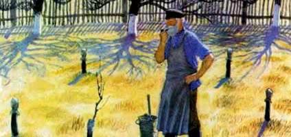История одной яблоньки — Ушинский К.Д.