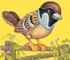 """Карточки для малышей """"Животные и птицы"""""""