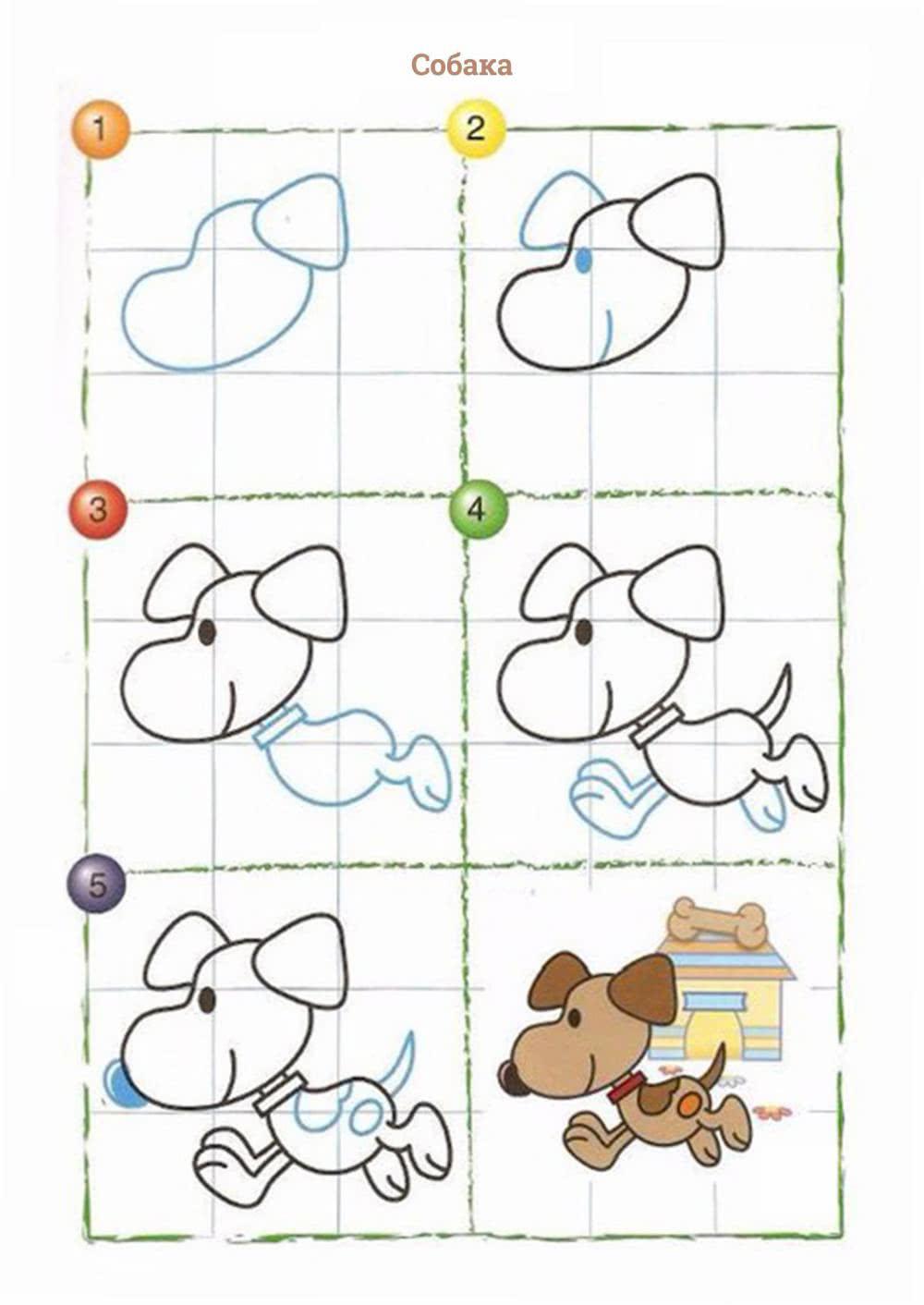 Рисуем животных по клеткам