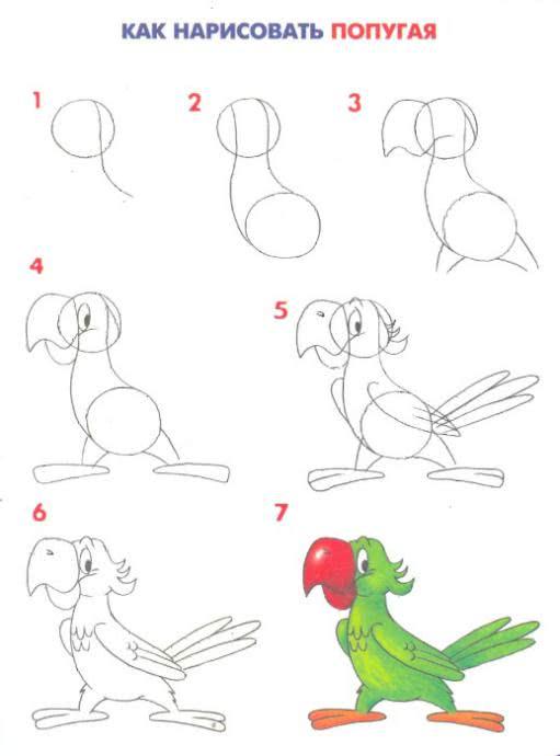 Рисуем животных и птиц