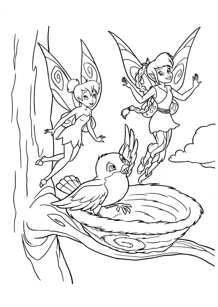 Раскраски Фея Динь-Динь  (Тинкербелл)