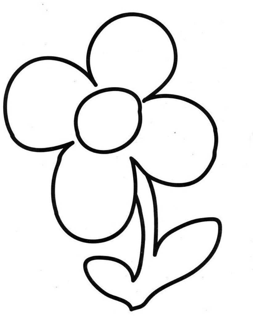 Раскраски Растения