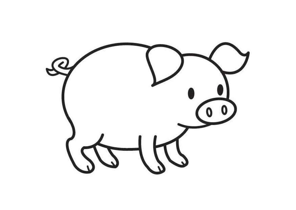 Картинка свинки черно-белая