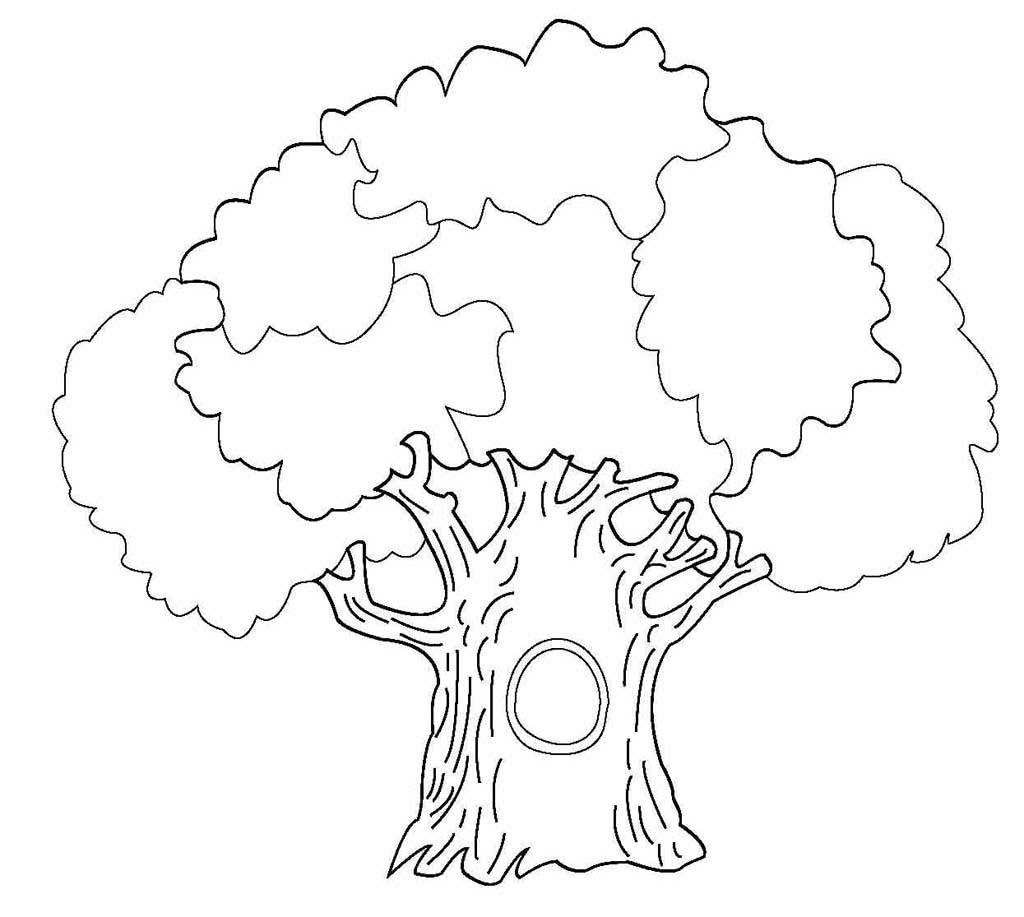 удачный распечатать дерево фото лома фото