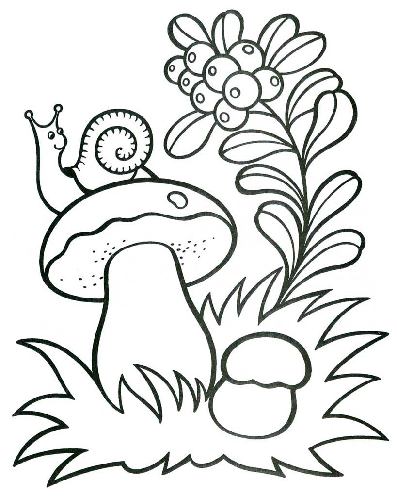 Раскраски Лето для детей 3-10 лет. Раскраски Природа и ...