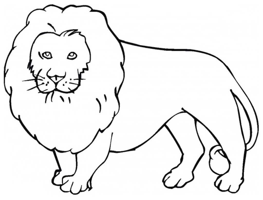 рисунки животных лев томате идеальное