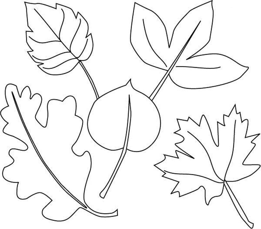 картинки для рисования листья деревьев оттенок