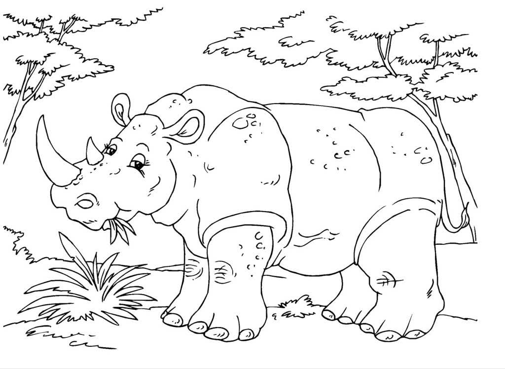 большинстве раскраска носорог распечатать вряд захочется