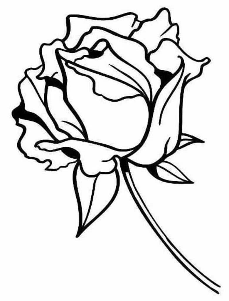 черно белые картинки для распечатки роза городу, получили море