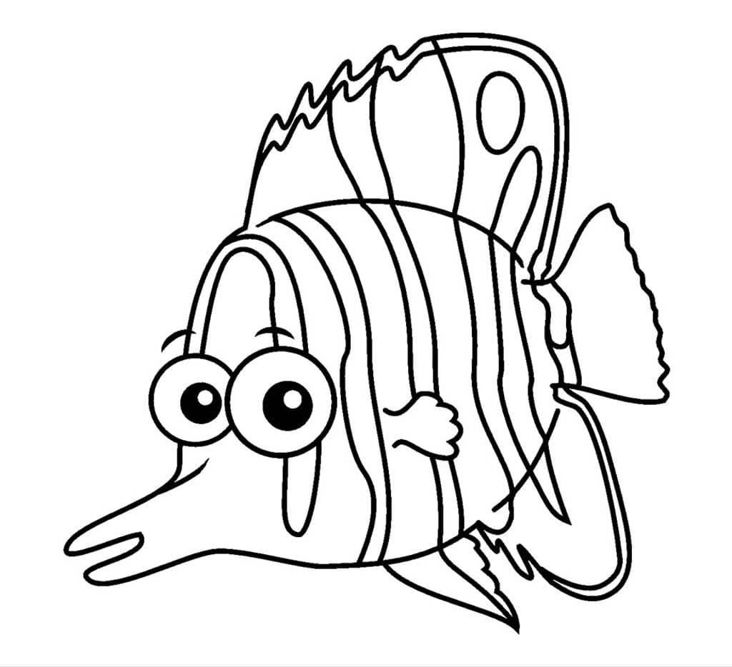 установки морские рыбки раскраска что