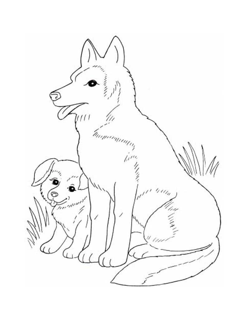 хотели видеть раскраска волчонок и мама чтобы картинки