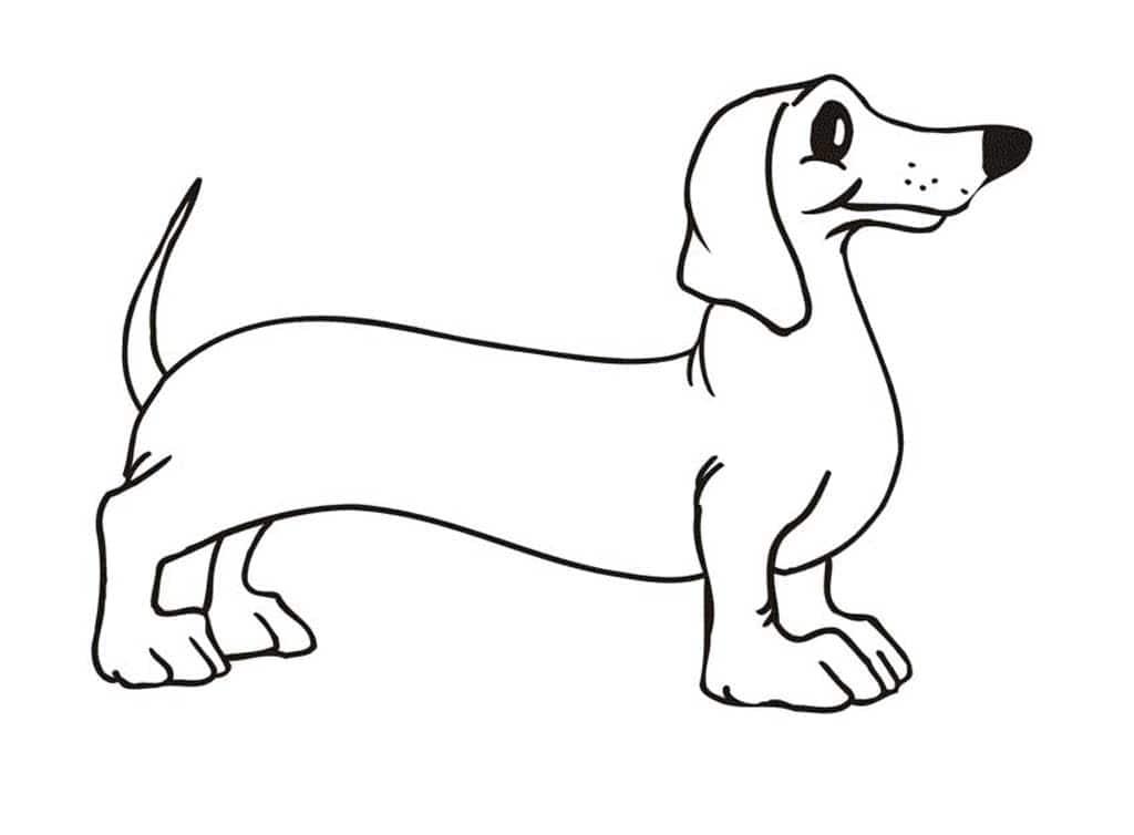 модные собак рисунок раскраска постоянно
