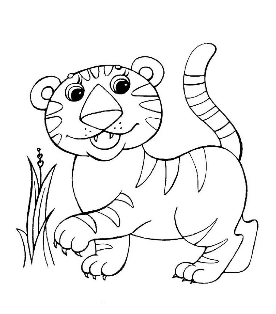Интересные животные раскраска картинки