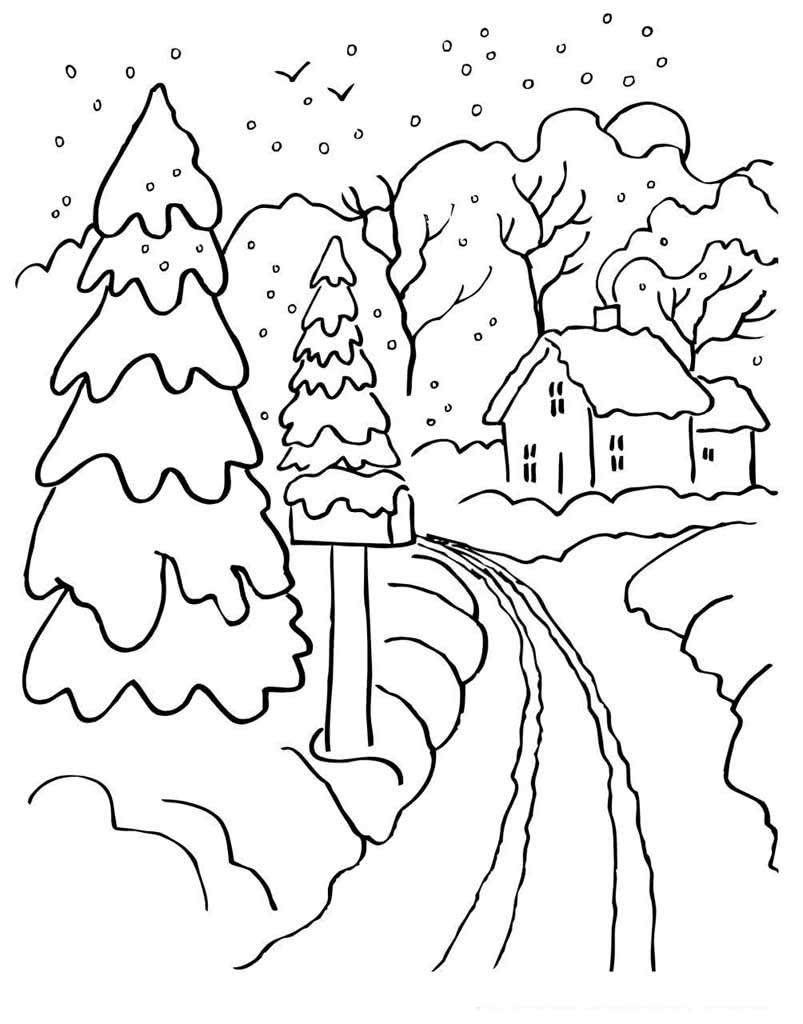 Картинка зимний лес для детей раскраска, днем рождения