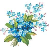 Раскраски Цветы
