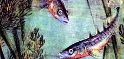 Рыбий дом — Бианки В.В.
