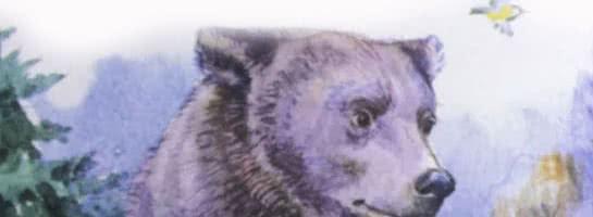 Заяц, косач, медведь и весна — аудиосказка Бианки В.В.