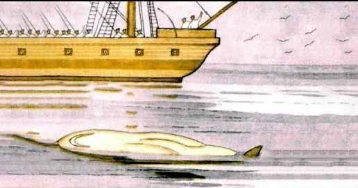Акула - Толстой Л.Н.