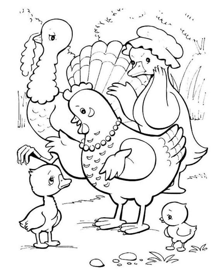 ежедневном птичий двор раскраска для малышей вашему