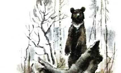 чтобы пришвин рассказ медведь с картинками породы, цвета