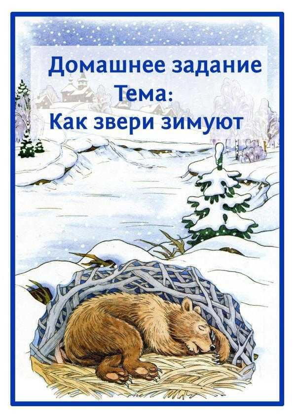 Как звери зимуют. Задания для детей.