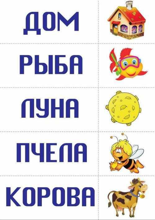 Учимся читать. Карточки со словами и картинками.