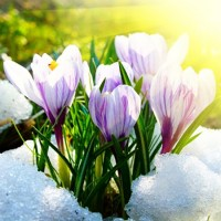 Апрель - песня о весне