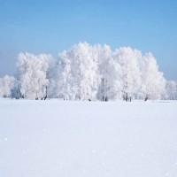 Белый снег - песня про зиму