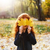 Осень, осень, осень снова к нам пришла - песня про осень