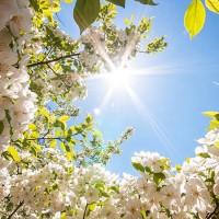 Лучик солнца - песня о весне