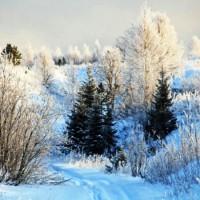 Морозный денек - песня про зиму
