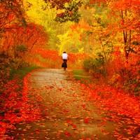 Осенние дорожки - песня про осень