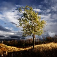 Улетай туча - песня про осень
