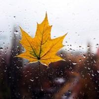 Полгода плохая погода - песня про осень